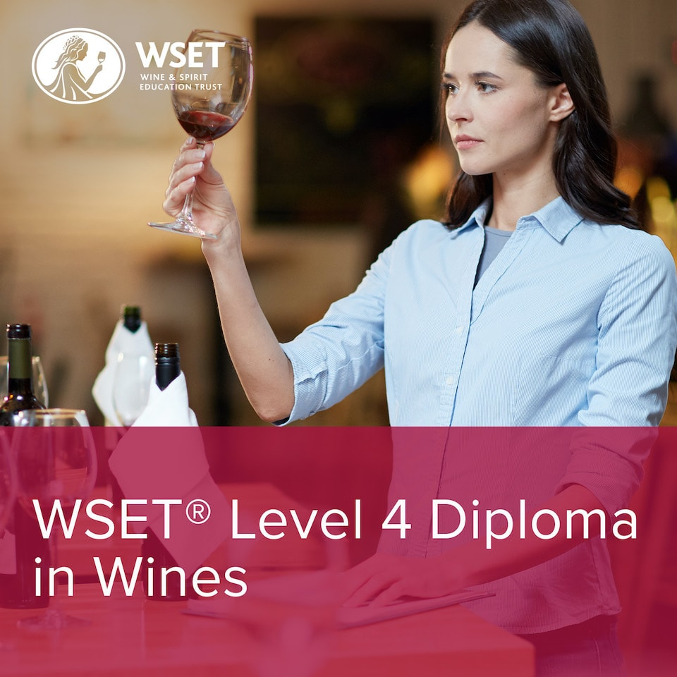 WSET Level 4 Diploma in Wines